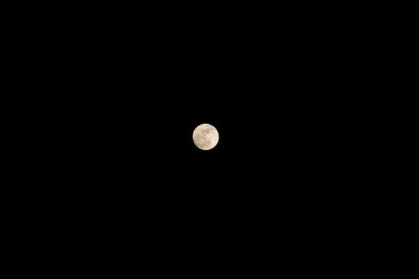 보름달에 소원을 빌었다.